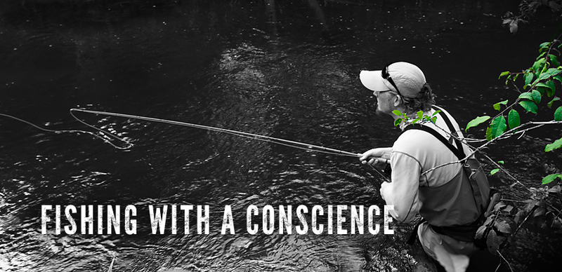 Fishing with a concience